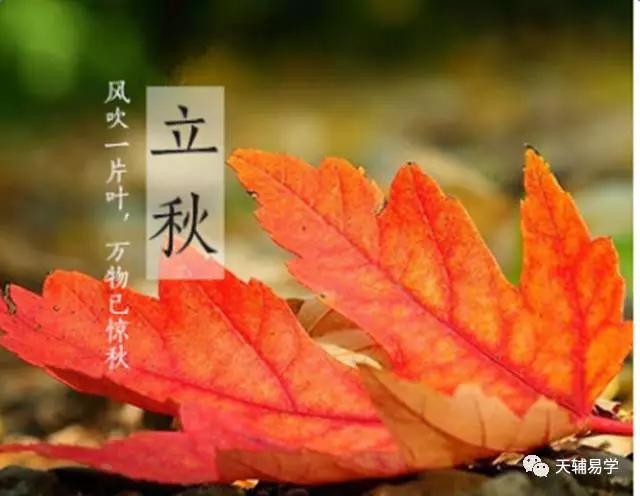 �K柏逞:立秋,即暑去凉来,意味金秋时节要养肺... ...
